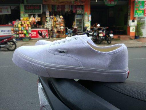 vans classic trắng