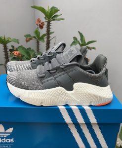 Aiddas prophere gray