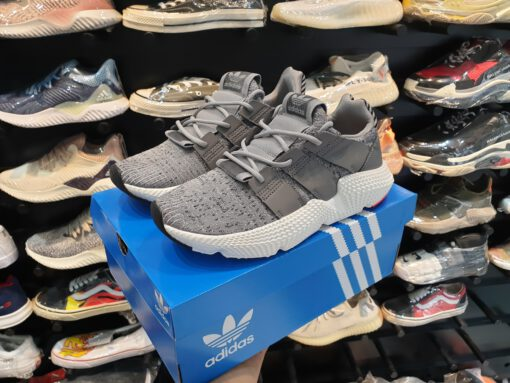 Adidas prophere sf xám